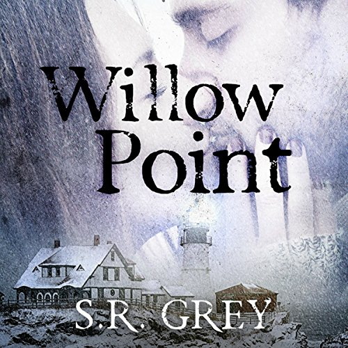 Willow Point audiobook cover art