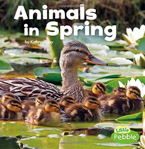 Animals in Spring (Celebrate Spring)