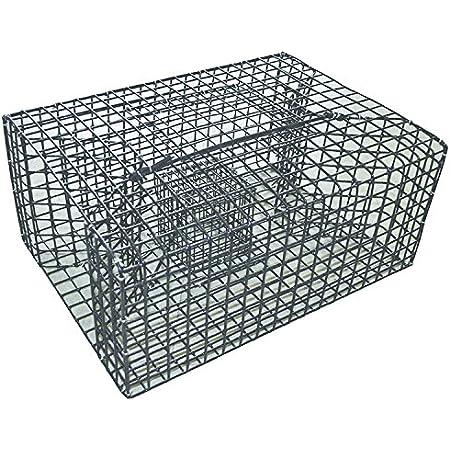 Frabill 1264 Pinfish Trap