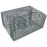 Pinfish Trap (18'x14'x8')