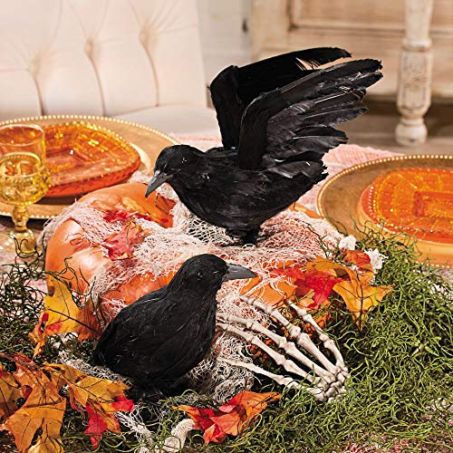 Realistic Feathered Crows -Set of 2 - Great Halloween Prop! by wd