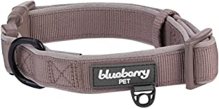 Blueberry Pet 2 Colors Soft & Comfortable Made Well Classic Neoprene Padded Dog Collars