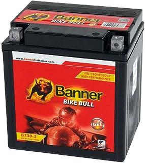 Banner Blei Gel Motorrad Batterie Harley YTZ30L BS GT30 3 30Ah 12V 53001 Rasentraktor