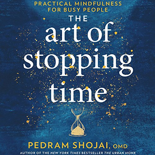 The Art of Stopping Time audiobook cover art