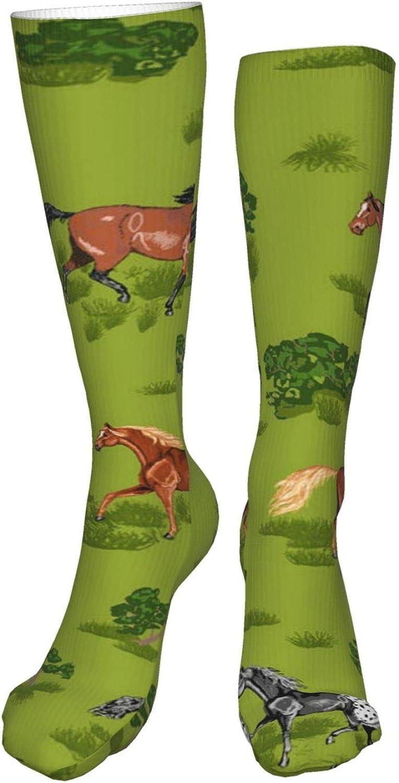 Prancing Horses Women Premium High Socks, Stocking High Leg Warmer Sockings Crew Sock For Daily And Work