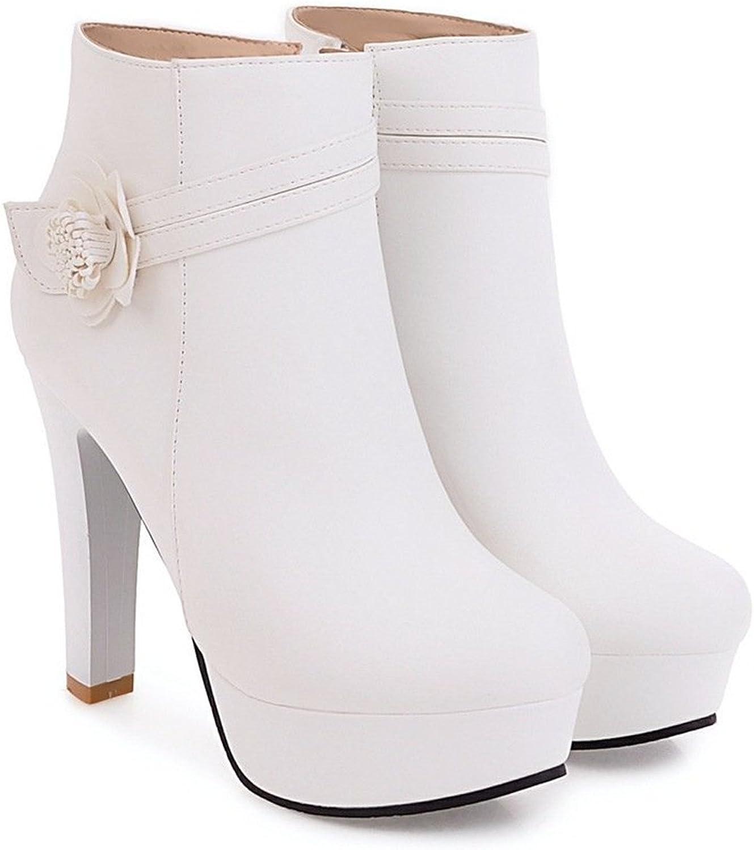 Robert Reyna Fashion Women's High Heel Platform Zip Short Dress Boots