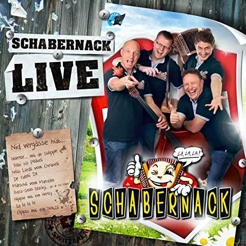 Ds Hippigschpängschtli (feat. Herby Knöpfli) (Live)