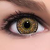 Lenti a contatto colorate Circle Lenses'Princess Brown' in marrone, morbide, non corrette + 10ml di soluzione combinata, in confezione da due - prodotto a marchio di qualità superiore, Cosplay
