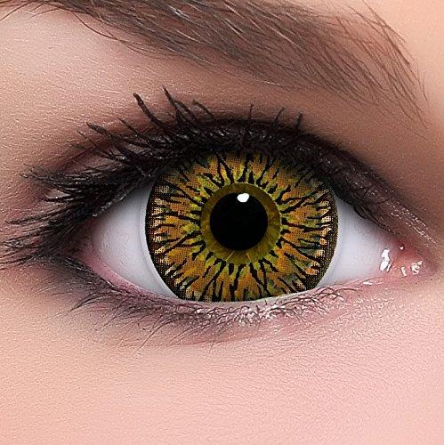 Circle Lenses braune Princess Brown ohne Stärke + Behälter I 15mm I weich I 3 Monate anwendbar