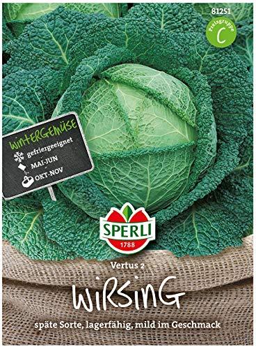 81251 Sperli Premium Wirsing Kohl Samen | Mild und Fein im Geschmack | Lagerfähig | Wirsing Saatgut | Wirsingkohl Samen | Wirsing Samen