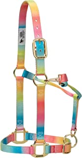 Weaver Leather 35-6795-R1 Polyester Rainbow Adjustable Chin and Throat Snap Halter, 1