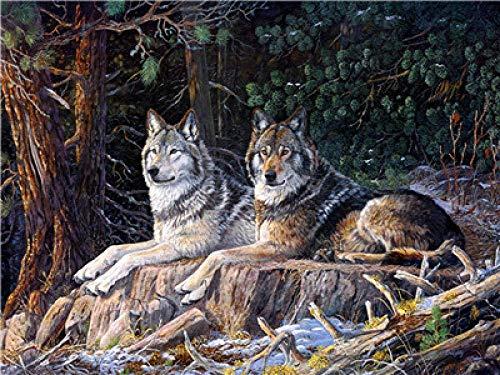 ZaosanKits de Pintura por números sin Marca Two Wolves - Pintura al óleo en Lienzo para Bricolaje Adultos, niños y Principiantes utilizan Pinceles y Pintura acrílica para Pintura artística - 40x5