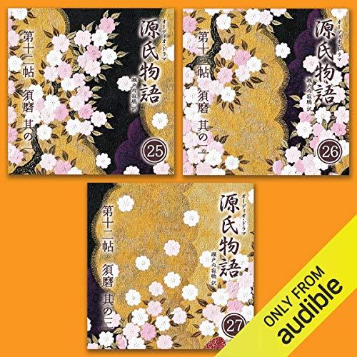 『源氏物語 瀬戸内寂聴 訳 3本セット(九)』のカバーアート