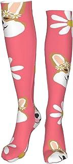 Osmykqe, Corgi - Calcetines deportivos de coral para niños, diseño de margaritas y corgis, ideal para correr, atlético y viaje (60 cm)