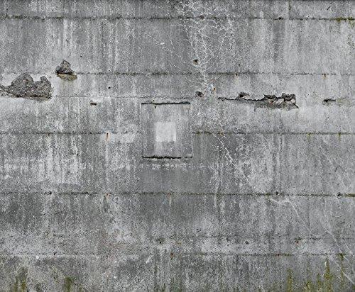 Vlies Tapete Rasch Factory II 445510 Wandbild Beton Rohputz Riss Mauer 372x300cm