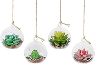 TQVAI 4 Pack Hanging Glass Globe Air Planter Terrarium Vase with 39 inch Sling (Not Included The Plants)