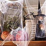 100g Halloween Dekoration Spinnennetz, 100g Dehnbaren Spinnennetzen und 100 Schwarzen Horrorspinnen Für Halloween Party Props