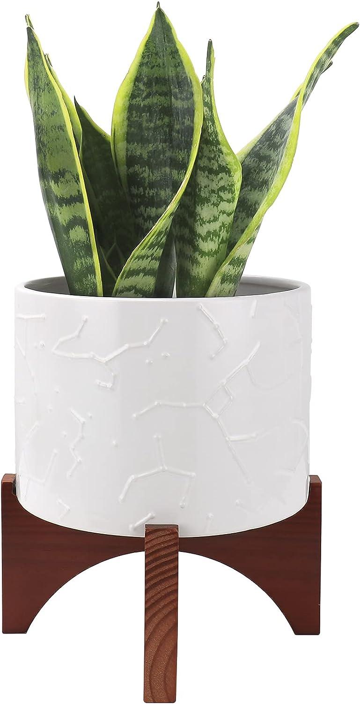 Bargain LA JOLIE MUSE Ceramic Phoenix Mall Plant Pot Constellatio Inch - with 8 Stand