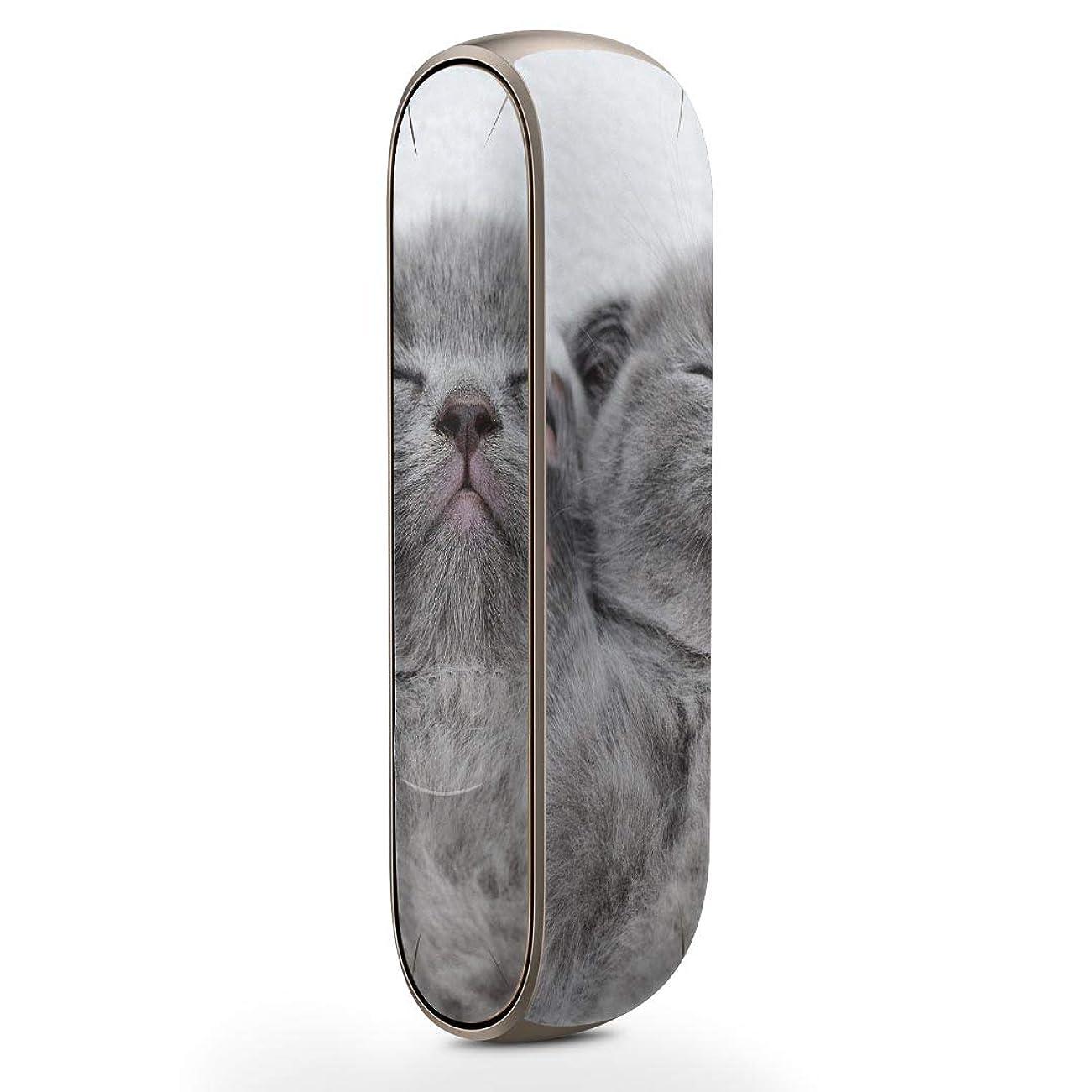 スリム条約円形igsticker IQOS3 専用 デザインスキンシール IQOS 3 対応 シール IQOS 3 専用スキンシール フル アクセサリ 保護シール デコシール 011682 猫 動物 写真
