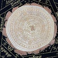 アストロラーベ チャクラ ヒンドゥー教 密教 七脈輪 占い 天然木材 ミステリー オカルティズム オカルト 置物