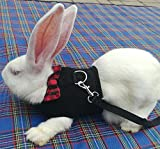 Rabbit Bunny Kitten Harness No Pull Cat Leash Stylish Vest Harness for Small Animal Adjustable Soft Breathable Walking Harness Set (BLACK, M)