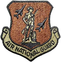 US Air Force Air National Guard OCP Spice Brown Patch with Hook Fastener