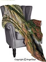 AngelSept Useful Everyday Throw Blankets,Misty Autumn Woodland and Stream at Golitha Falls on Bodmin Moor in Cornwall,51