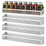 Bextsrack Spice Rack Organizer for Cabinets, 4 Pack Wall Mount Spice Seasoning Jars Shelf Storage Organizer for Cupboard, Pantry Door, Silver