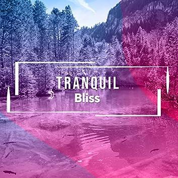 # 1 Album: Tranquil Bliss