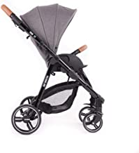 Babymonsters BM3.0-105 Fresh 3.0 - Carro para bebé, color gris