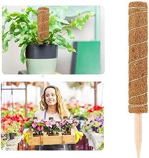 Prevessel Mospalen voor klimplanten - Plant Support Stakes Kokosmos Sticks Plant Trellis voor Indoor Outdoor Klimplanten -...