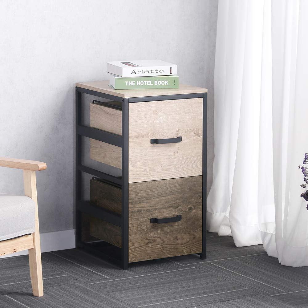 Portland Mall Dorafair File Cabinet Rustic Storage New sales with 2 Drawe Filing