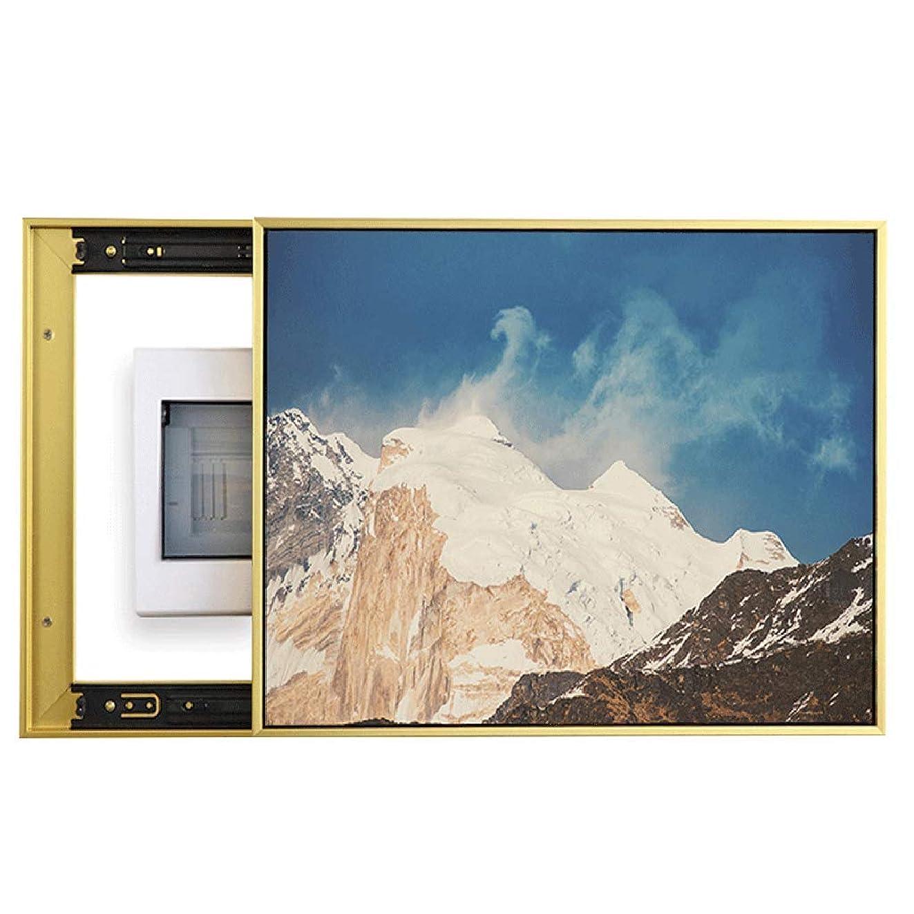 下手くぼみ分布QIQIDEDIAN 電気メーターボックス装飾的な絵画は、プッシュすることができますし、絵画壁の配信ボックスをブロックするためにプル (Color : White, Size : (40*50cm 30*40cm)-Push right)