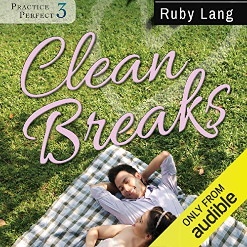 Clean Breaks audiobook cover art