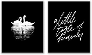 Black and White Romantic Swans Photography Prints - Set of 2 (8x10 Inches) Glossy Monochromatic Animal Wall Art Decor - Love - A Little Taste of Heaven
