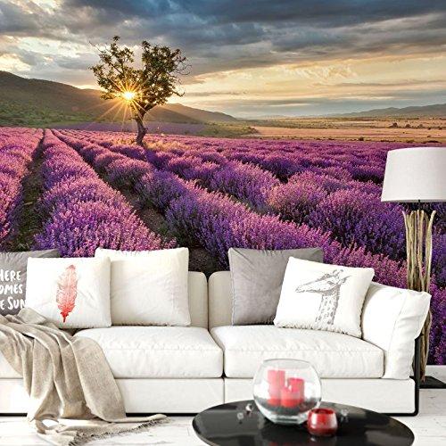 K&L Wall-Art Lila Blumen Fototapete 3D Effekt Panorama Landschaft XXL Wandposter Lavendelblüte Tapete 384cm x 260cm