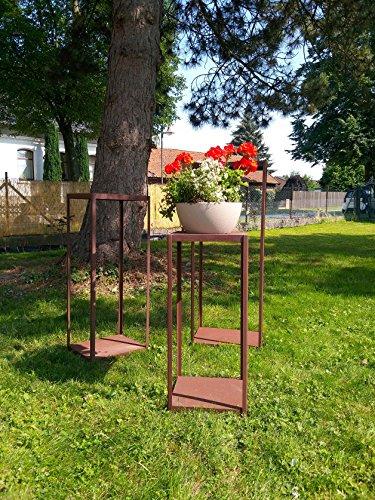 Gerry Étagère en bois rectangulaire avec treillis métallique effet rouille 39 x 33/100 cm