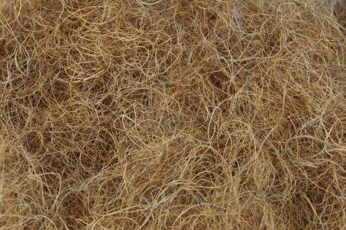 Fränkische Schlafmanufaktur 1kg Kokosfasern, Bastelbedarf, Dekoration und Nestbau