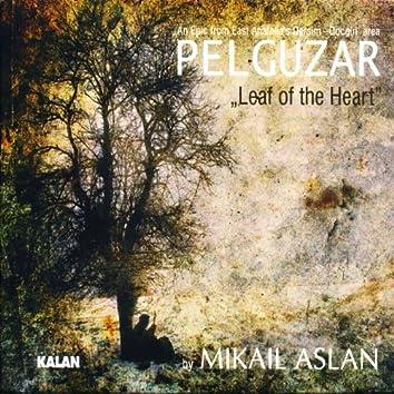 Pelguzar
