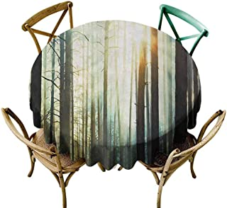 W Machine Sky Table Cover Nature,Fairy Foggy Forest Mist in The Woods Enchanted Wilderness with Sunbeams Image,Teal Brown Diameter 70