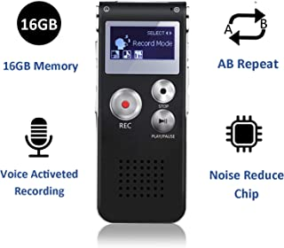 small microphone recorder