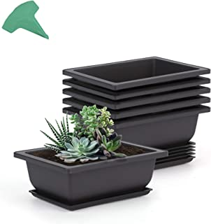 GROWNEER 6 Packs 6.5 Inches Bonsai Training Pots with 15 Pcs Plant Labels, Plastic Bonsai Plants Growing Pot for Garden, Y...