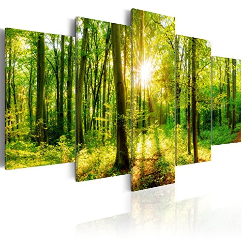 murando Acrylglasbild Wald 200x100 cm 5 Teilig Wandbild auf Acryl Glas Bilder Kunstdruck Moderne Wanddekoration - Wald Natur Baum c-B-0186-k-m