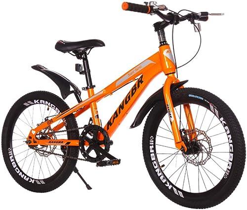 Defect Kinder Fahrrad Vordere und hintere Scheibe bremst Kindergebirgsfahrrad des Studentenauto-Fahrrades im Freien ab