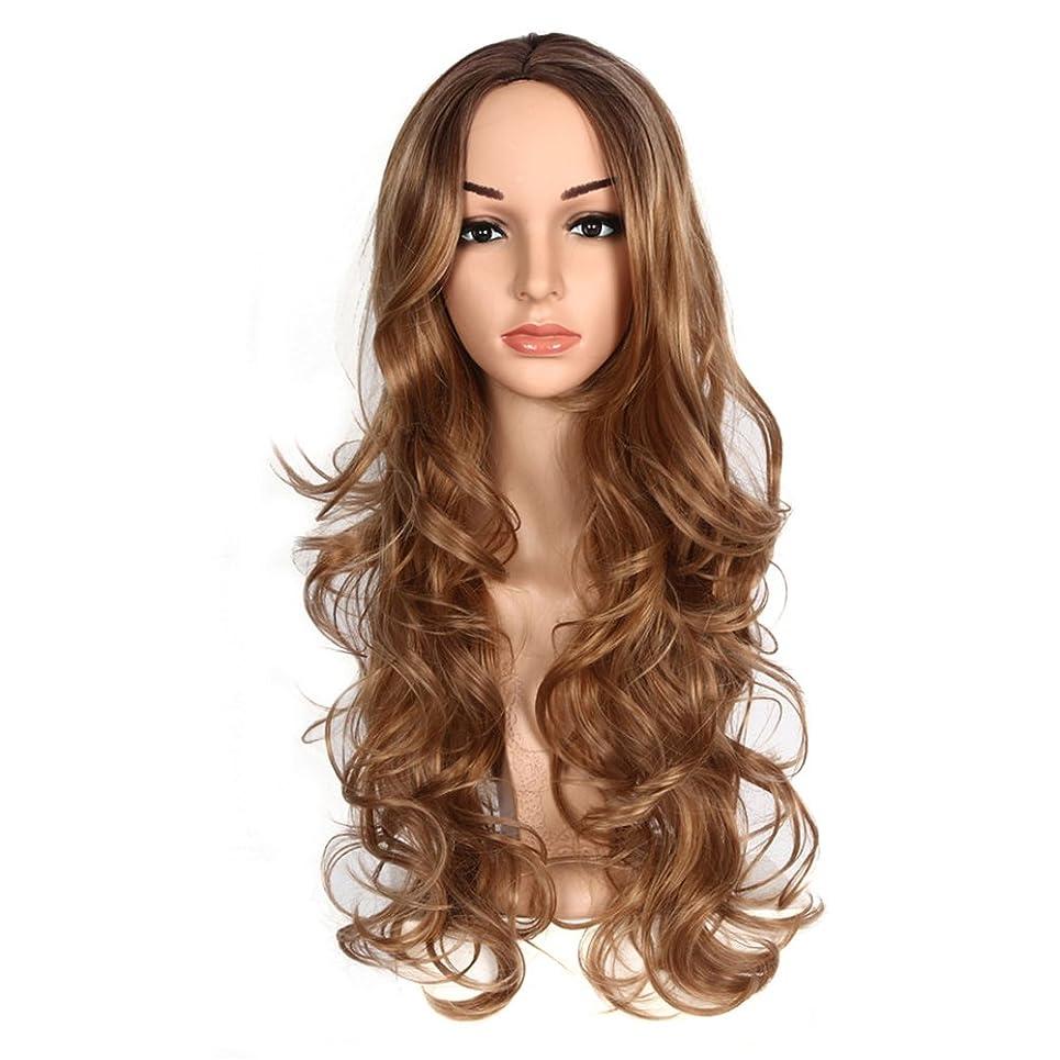 サドル怠百万かつらの長い髪、耐熱合成、女性パーティーのロールプレイングパーティー