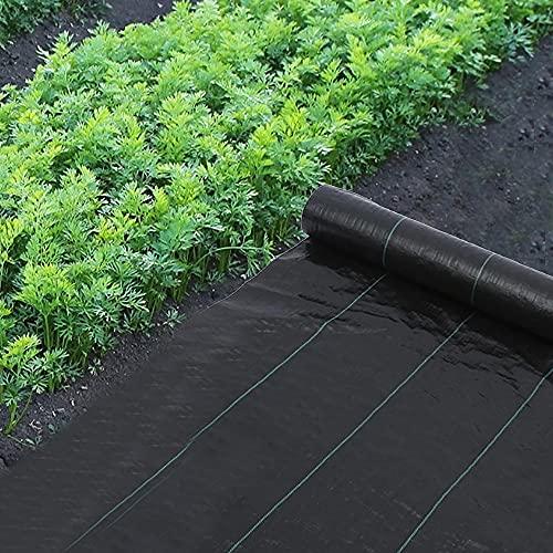 LJJ Fieltro Antimaleza, Resistente a la Rotura Permeable 1M x 10M Rollo Malla contra Malas Hierbas, Estabilizada contra UV Tejido, Geotextil para Jardín