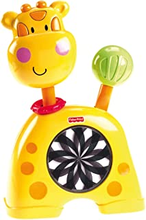 Fisher-Price Discover 'n Grow Push 'N See Kaleidoscope, Giraffe (Discontinued by Manufacturer)