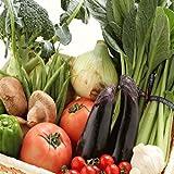 和歌山県産 旬野菜おまかせセット 新鮮 野菜詰め合わせ (野菜セット) 10種以上