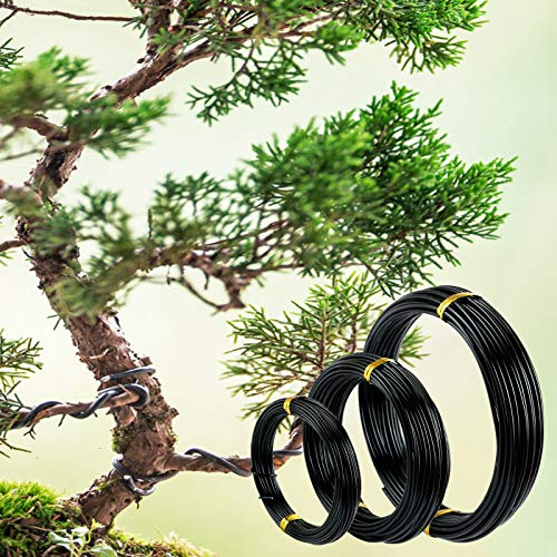LEMESO 3 Roll Bonsai Training Wire Kit, Aluminum Bonsai Wires Set in 3 Sizes - 1mm/1.5mm/2mm (118 Ft Total), Three Pack Black Wires for Holding Indoor Trees Bonsai Branches