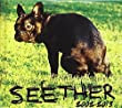 Seether Albuum Cover